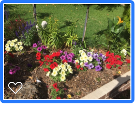 Some loved gardens